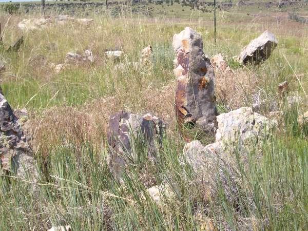 Photo02-600